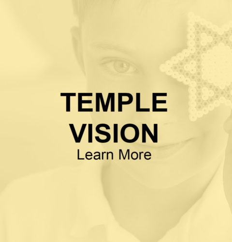 temple-vision